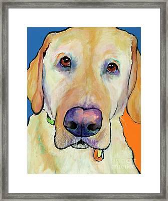 Spenser Framed Print by Pat Saunders-White