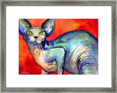 Sphynx Cat 6 Painting Framed Print by Svetlana Novikova