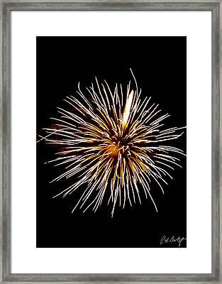 Spider Ball Framed Print by Phill Doherty
