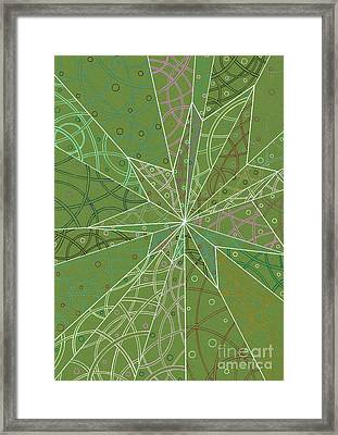 Spider Silk Framed Print by Amy Nelson