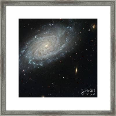 Spiral Galaxy Ngc 3370 Hst Image Framed Print by Space Telescope Science Institute  NASA