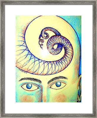 Spiral Of Knowledge Framed Print by Paulo Zerbato