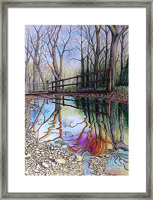 Spirit Of The Woods Framed Print by David Neace