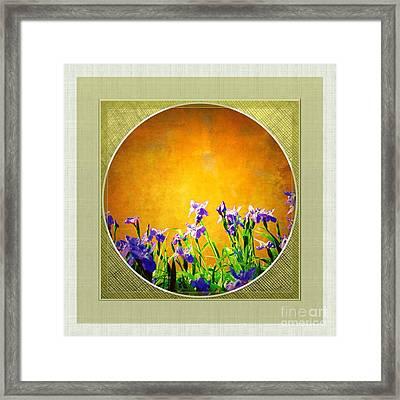 Splendor Framed Print by Darla Wood
