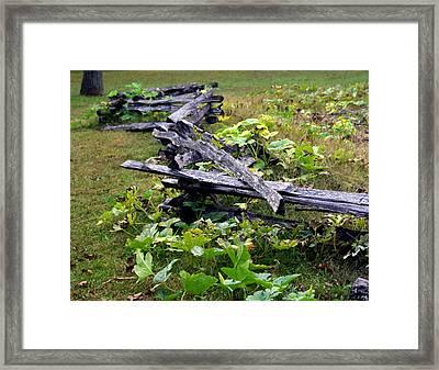 Split Rail Framed Print by Marty Koch