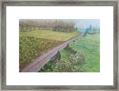 Spring At The Railroad Cut Gettysburg Framed Print by Joann Renner