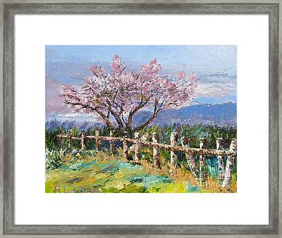 Spring Blossom Pallet Knife Painting Framed Print by Lisa Boyd