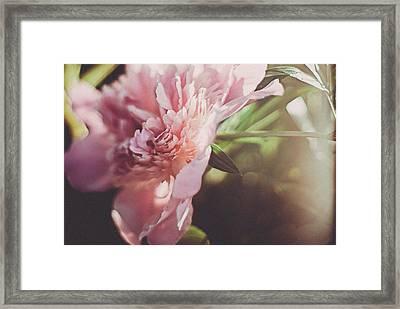 Spring Blossom Framed Print by Tracy  Jade