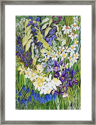 Spring Border Framed Print by Joan Thewsey