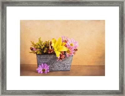 Spring Bounty Framed Print by Tom Mc Nemar