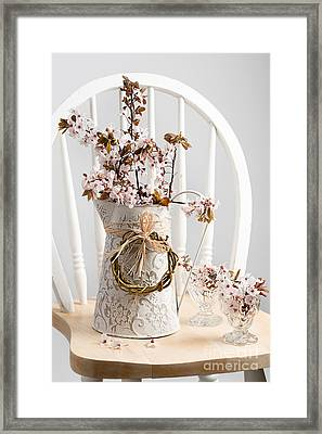 Spring Cherry Blossom On Chair Framed Print by Amanda And Christopher Elwell