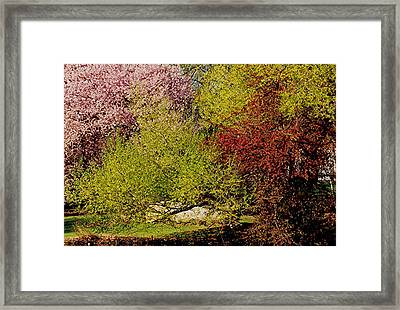 Spring Colors Framed Print by Juergen Roth