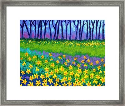 Spring Daffodils Framed Print by John  Nolan