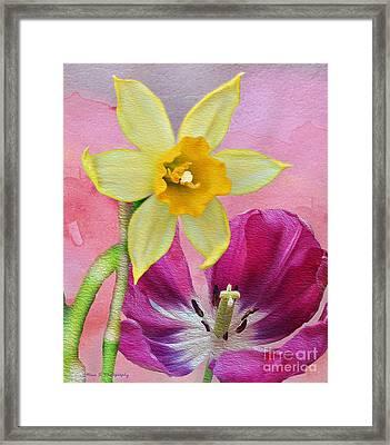 Spring Delights Framed Print by Nina Silver