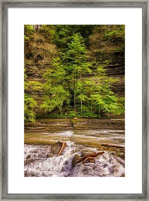 Spring Flow 2 Framed Print by Steve Harrington