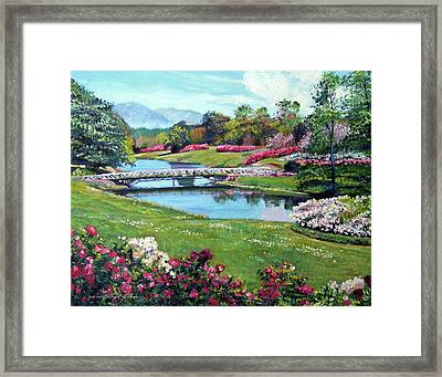 Spring Flower Park Framed Print by David Lloyd Glover