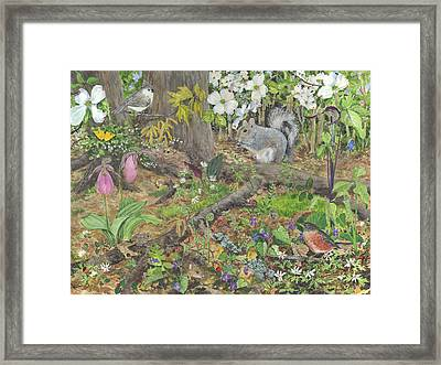 Spring Forest Framed Print by Sharon Himes