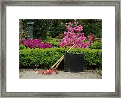 Spring Gardening Framed Print by Frank Tschakert
