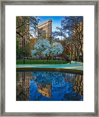 Spring In Madison Square Park Framed Print by Chris Lord