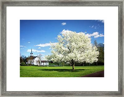 Spring In The Country Framed Print by Carolyn Derstine