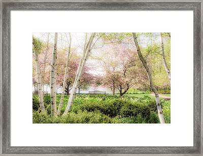 Spring In The Garden Framed Print by Julie Palencia