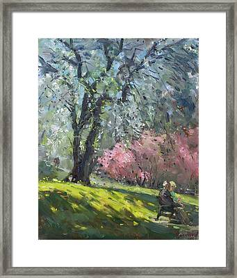 Spring In The Park Framed Print by Ylli Haruni