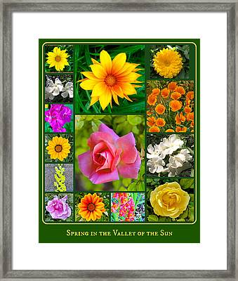 Spring In The Valley Of The Sun Framed Print by Barbara Zahno