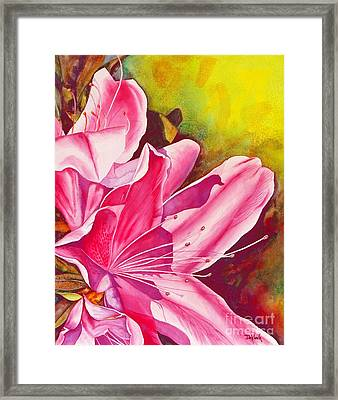Spring Into Pink Framed Print by Joe DeKleva
