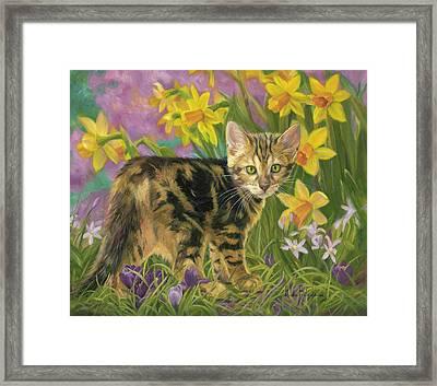 Spring Kitten Framed Print by Lucie Bilodeau
