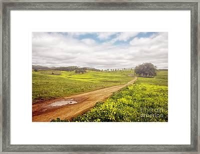 Spring Landscape Framed Print by Carlos Caetano