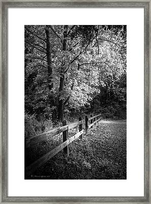Spring Leaves B/w Framed Print by Marvin Spates