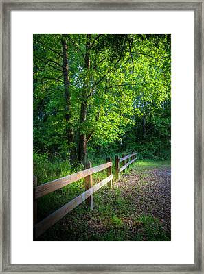 Spring Leaves Framed Print by Marvin Spates