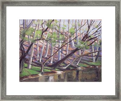 Spring, Monocacy Creek Framed Print by Grace Keown