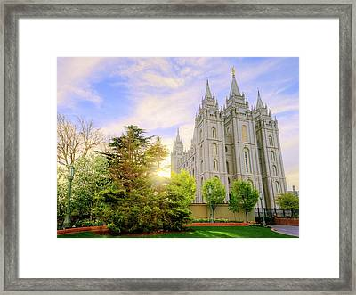 Spring Rest Framed Print by Chad Dutson