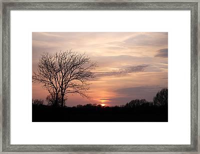 Spring Sunset Framed Print by Mark Severn
