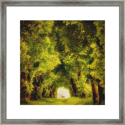 Spring Time Framed Print by Piotr Krol (bax)