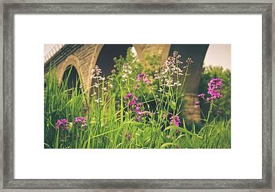 Spring Under The Arches Framed Print by Viviana  Nadowski