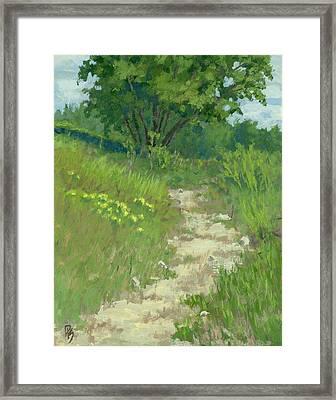 Spring Walk Framed Print by David King