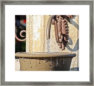 Spring Water Framed Print by Dennis Dugan