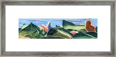 Spring Waterlilies Framed Print by Jan Amiss