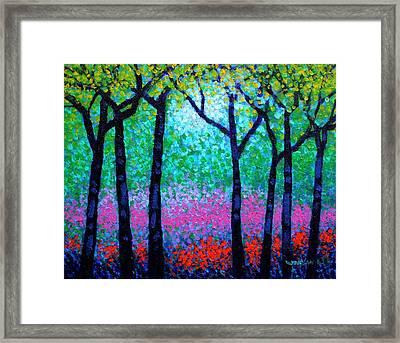 Spring Woodland Framed Print by John  Nolan