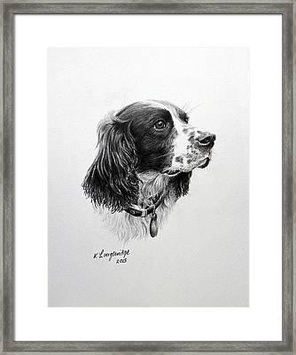 Springer Framed Print by Karen Loughridge