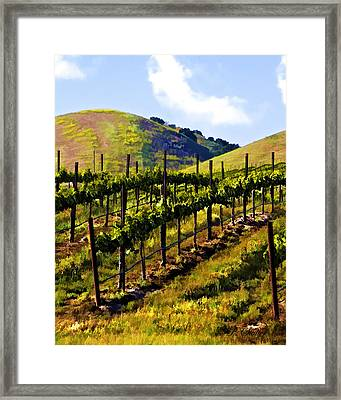 Springs Promise Two Framed Print by Patricia Stalter
