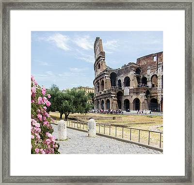 Springtime In Rome Coliseum And Tourists Framed Print by Daniele Chiarottini