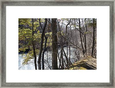 Springtime Framed Print by Yelena Rubin