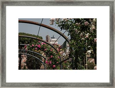 Sprintime In Rome, Vittoriale From Roses Garden 2 Framed Print by Daniele Chiarottini