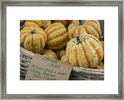 Squash Framed Print by Juli Scalzi