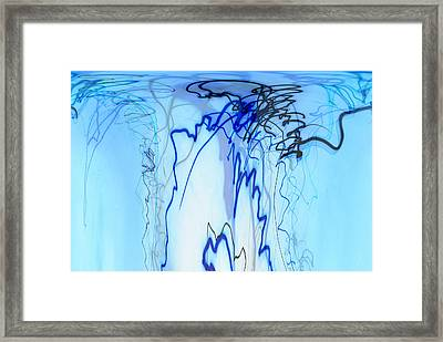 Squid Ink Framed Print by Don Zawadiwsky