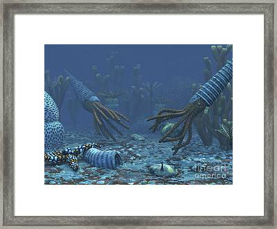 Squid-like Orthoceratites Attempt Framed Print by Walter Myers