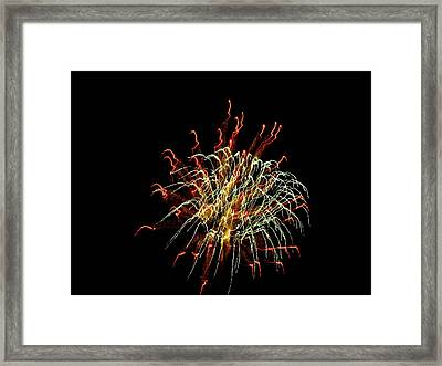 Squiggles 02 Framed Print by Pamela Critchlow